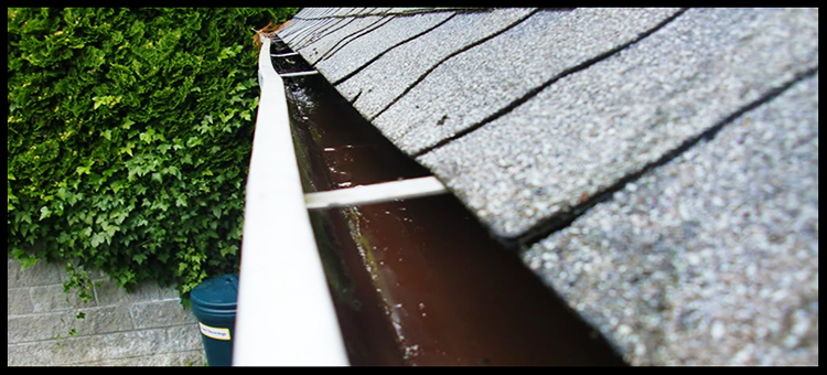 gutter-cleaning-coquitlam