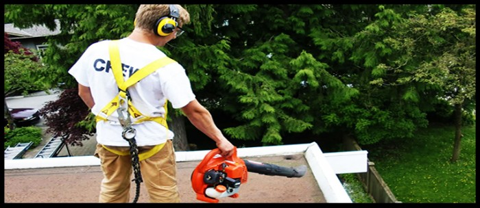 roof-cleaning3